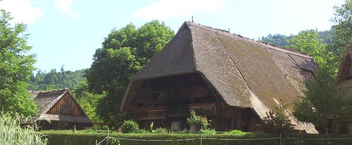 Загадочные крыши Шварцвальда